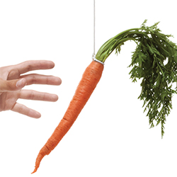 carrot-incentives